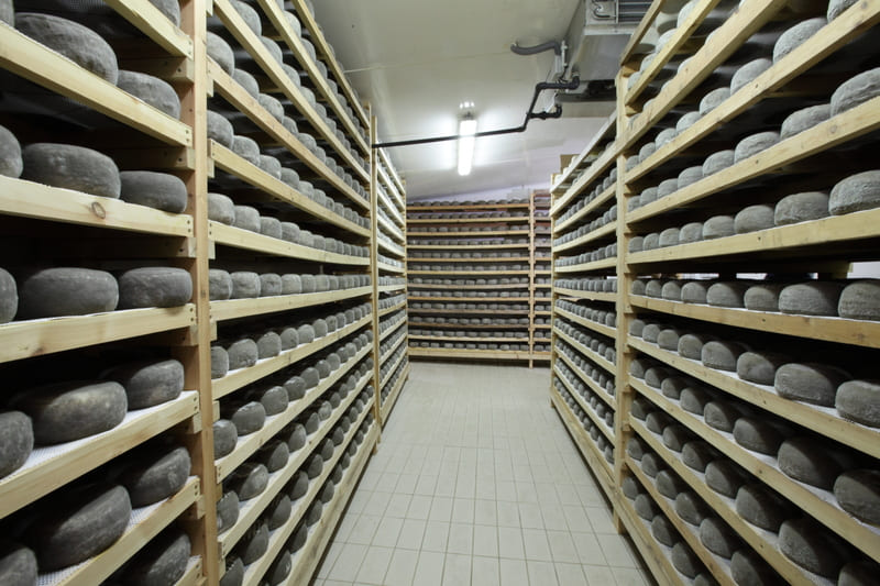 Sant Gil d'Albió, d'un petit obrador a una les formatgeries més grans del país