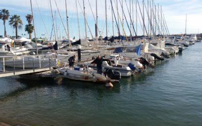 La Festa del Calamar i les Jornades Gastronòmiques recordaran els gustos de la pesca antiga de Salou