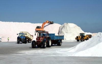 Mala campanya salinera al delta de l'Ebre, que acaba amb 45.000 tones recollides, menys de la meitat de l'habitual